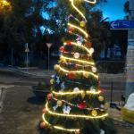 L'albero di San Giacomo