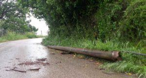 palo caduto via Abruzzi Nettuno